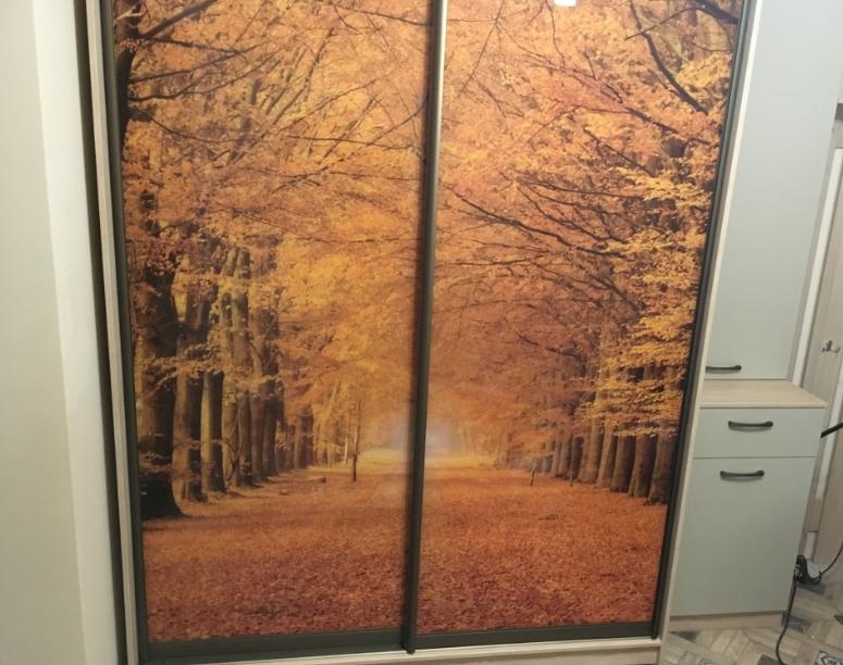 Шкаф-купе 2-х створчатый Осенний лес