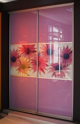 Встроенный шкаф-купе 2-х створчатый Розовый с цветами