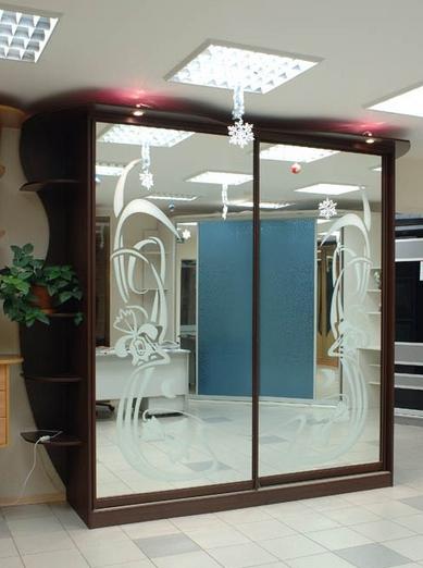 Шкаф-купе 2-х створчатый зеркальный с пескоструйным рисунком Цветы