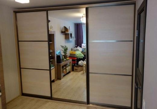 Шкаф-купе 3-х створчатый Дуб Сонома с делителями и зеркалом