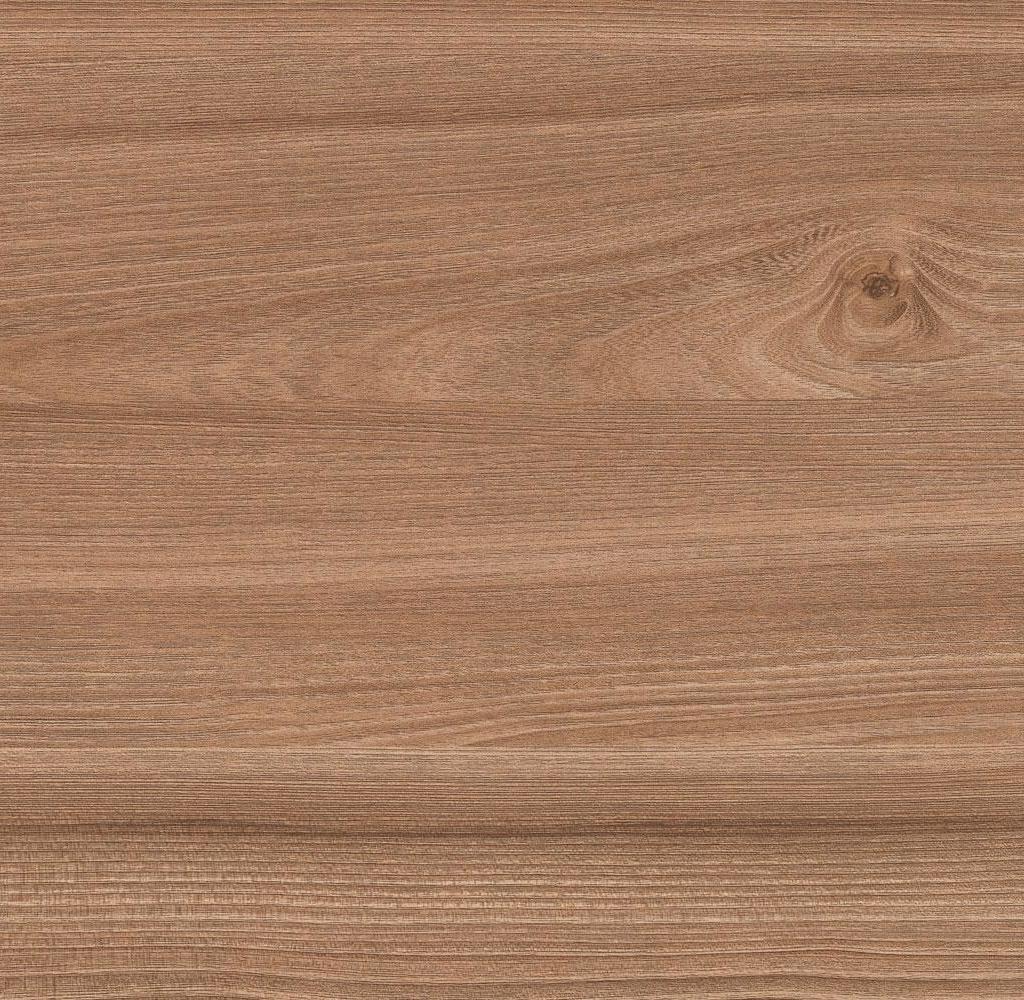 Вяз Тоссини коричневый