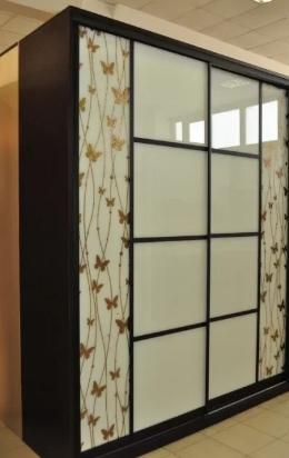 Шкаф-купе 2-х створчатый Черный Белое стекло рисунок Бабочки